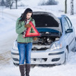 Stock Photo: Winter car breakdown - woman warning triangle