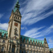 City hall in Hamburg — Stock Photo