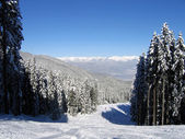 Skiing slope in Bansko, Bulgaria — Stockfoto