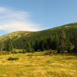 Gorgany region in Carpathians — Photo
