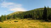 Gorgany region in Carpathians — Stock Photo