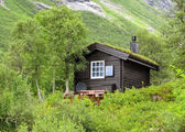 Typical norwegian house with grass on the roof — Stockfoto