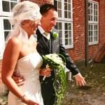 ������, ������: Wedding couple rice