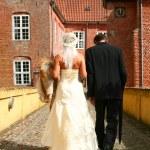 Wedding couple — Stock Photo #4499280