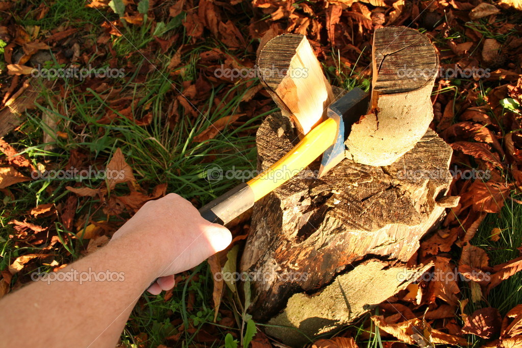 在秋天劈木柴在森林