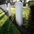 World war graves - Stock Photo