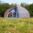 Stock Photo: Eco house