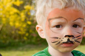 Face paint tiger boy child — Stock Photo