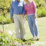 Senior couple walking in garden — Stock Photo #4752932