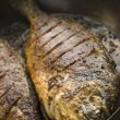 Stock Photo: Emperor Bream Roasted with Tikkspices
