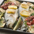Whole Sea Bass Roasted with Fennel Lemon Garlic and Cherry Tomat - Stock Photo