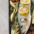 Whole Sea Bass Roasted with Fennel Lemon Garlic and Cherry Tomat - Stock fotografie
