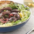 Baby Octopus Salad with Frisse Roquette and Chargrilled Bread — Stock Photo