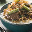 Sweet Soy Beef Fillet with Shirataki Noodles on Rice - ストック写真