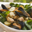 Mussel Watercress and Potato Salad - Stock Photo