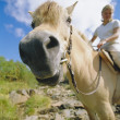 Young woman on horse — Stock Photo #4754569