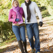 Young couple on autumn walk — Stock Photo #4754881
