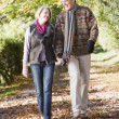 Senior couple walking along autumn path — Stock Photo #4754897