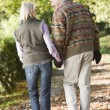 Stock Photo: Senior couple on autumn walk