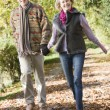 Senior couple walking through autumn woods - Stockfoto