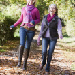 Foto Stock: Grown up mother and daughter on walk