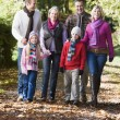Multi-generation family walking through woods - Stock Photo