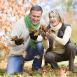 Senior couple collecting autumn leaves — Stock Photo #4754980