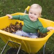 Toddler riding in wheelbarrow — Stock Photo #4755002