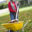 Mature woman collecting leaves in garden — Stock Photo
