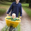 Boy giving toddler ride in wheelbarrow — Stock Photo