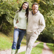 Stock Photo: Couple on walk along woodland path