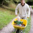 Father giving young son ride in wheelbarrow — Stock Photo