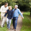 Grandfather walking with son and grandson — Stockfoto
