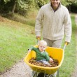 Father pushing young son in wheelbarrow — Stock Photo