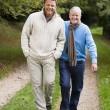 vuxna far och son promenader längs väg — Stockfoto