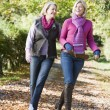 Mother and grown up daughter on walk through woods — Stock Photo