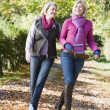 Stock Photo: Mother and grown up daughter on walk through woods