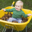 Young boy sitting in wheelbarrow — Stock Photo #4755147