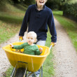 Boy pushing toddler in wheelbarrow — Stock Photo