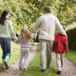 Rear view of family walking along track — Stock Photo #4755165