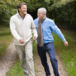 Father and grown up son walking along path — Foto de Stock