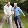 Stock Photo: Father and grown up son walking along path