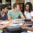 College students studying together in a library — Stock Photo #4755436