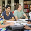 College students studying together in library — Foto Stock #4755442
