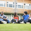 College students sitting and talking on campus lawn - Foto Stock