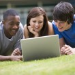 College students using laptop on campus lawn — Stock Photo