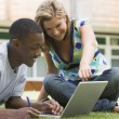 College students using laptop on campus lawn - Zdjęcie stockowe