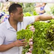 Man shopping in produce section - Stock Photo