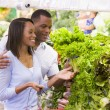 Stock Photo: Couple shopping in produce department