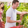 Young couple flirting in supermarket aisle — Stock Photo